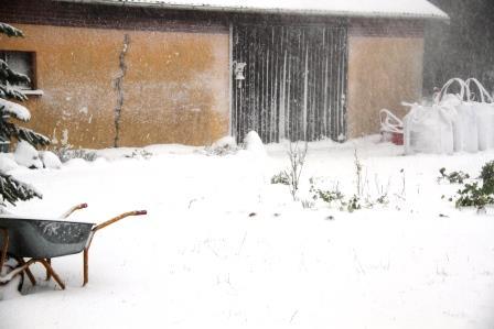 SNOW BIRTHDAY 016