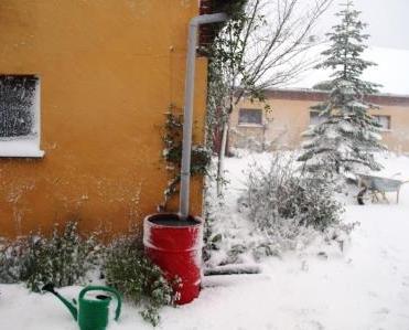 SNOW BIRTHDAY 018