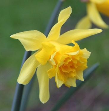 spring 022